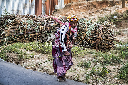 ethiopian woman carrying a load of