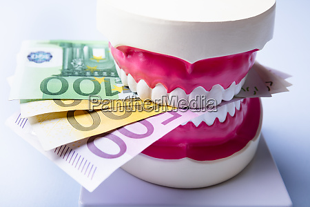 tooth model with euro notes over