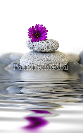 pebble stone cairn with flower and