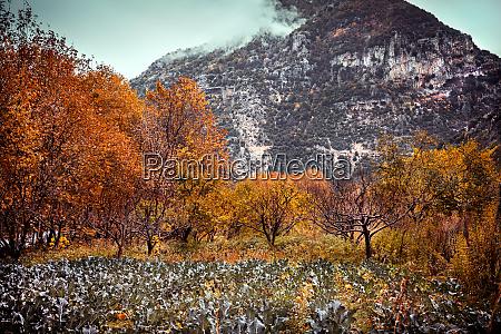 amazing mountainous landscape