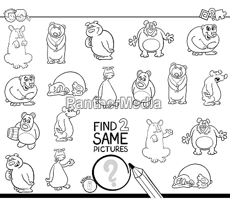 find two same bear characters coloring