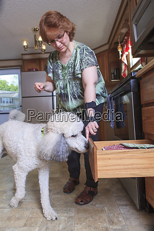 poodle service dog closing a kitchen