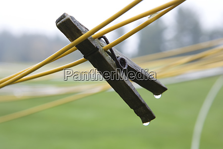 wet clothes pin on clothes lines