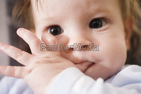 portrait of a cute child sucking