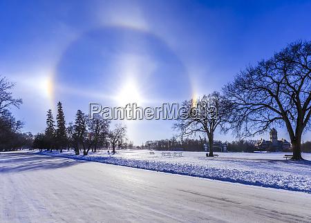sundogs and solar halo assiniboine park