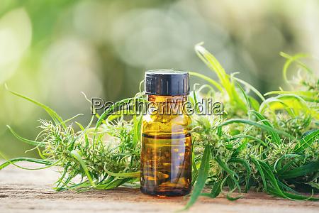 cannabidiol cbd extract in a bottle