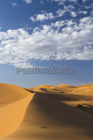 africa morocco sahara a classic landscape