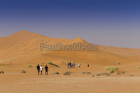 tourist heading towards dead vlei namib