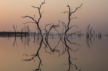africa zimbabwe matusadona national park reflections