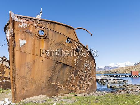 wreck of the dias in grytviken