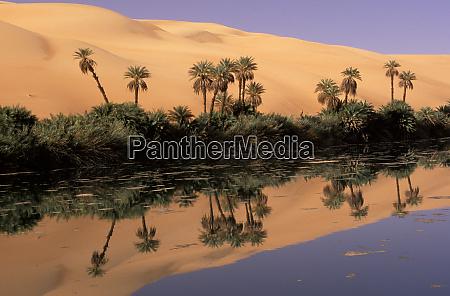 africa libya ubari sand dunes um