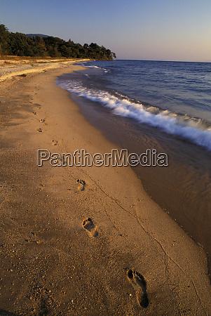 africa tanzania lake tanganyika beach landscape