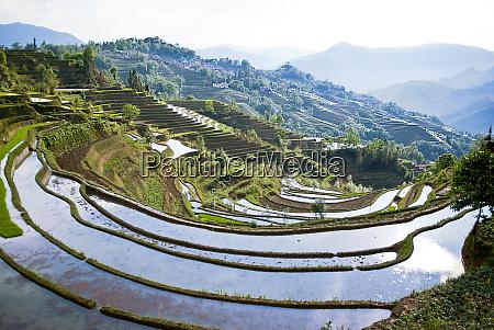 asia china yunnan province yuanyang county