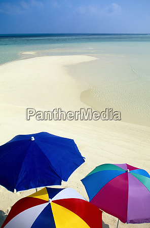 beach umbrellas tropical beach maldives