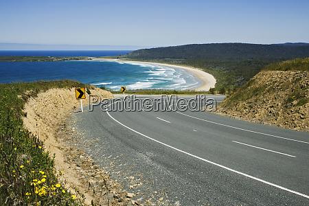 new zealand south island curvy road
