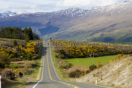 new zealand south island scenic highway