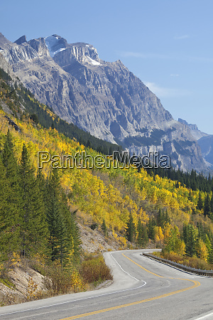 canada alberta jasper national park scenic