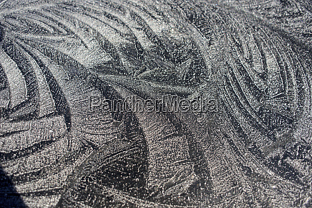 frost patterns winter in british columbia