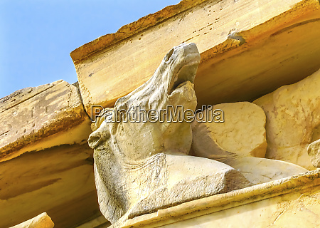 horse statue parthenon acropolis athens greece