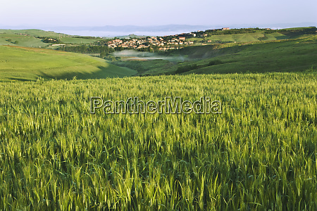 italy pienza landscape with hilltop town