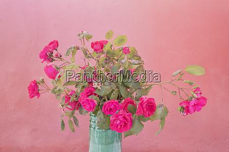 europe italy vernazza roses in vase