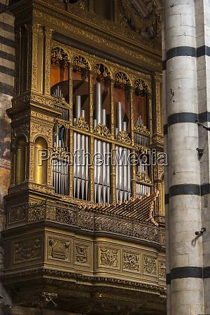 europe italy siena duomo organ
