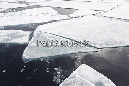 arctic norway svalbard spitsbergen pack ice