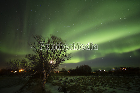 northern lights laukvik norway