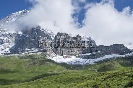 switzerland high mountain meadow are dwarfed
