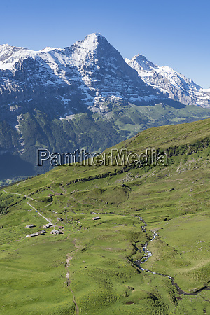 switzerland high country meadows and farmhouses