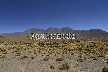 bolivian desert bolivia arid landscape