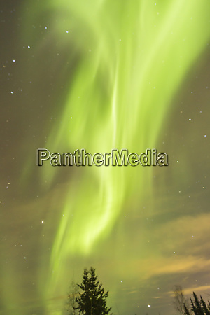 usa alaska fairbanks aurora borealis at