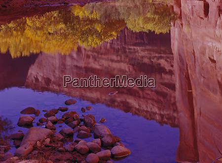 north america usa arizona canyon de
