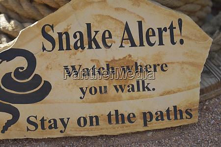 usa arizona apache junction sandstone snake