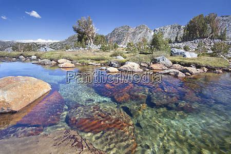 usa california inyo national forest clear