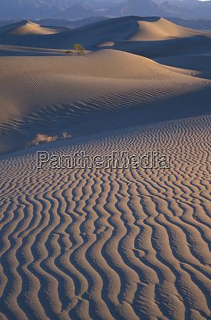 north america usa califorinia death valley