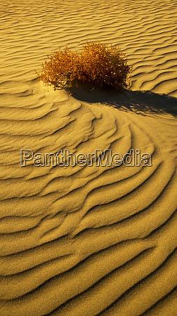 death valley national park california sand