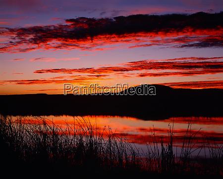 usa california tule lake national wildlife
