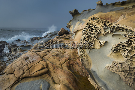 usa california shoreline landscape of tafoni