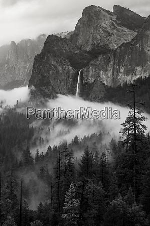 usa, , california., yosemite, national, park., black - 27338719