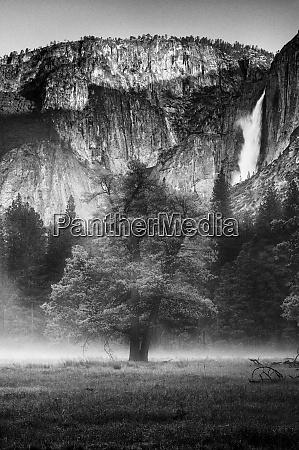 usa, , california., yosemite, national, park., black - 27338728