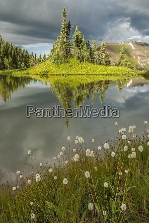 usa colorado gunnison national forest paradise