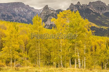 usa colorado gunnison national forest mountain