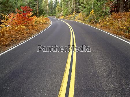 road scenic fall colors tioga road