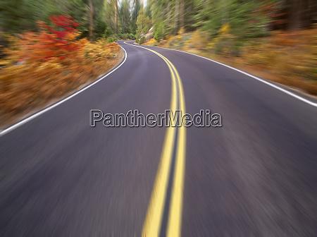 road scenic fall colors tioga pass