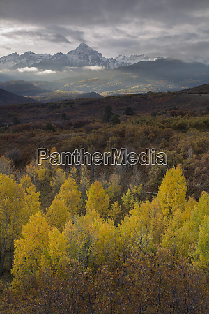 usa colorado uncompahgre national forest autumn