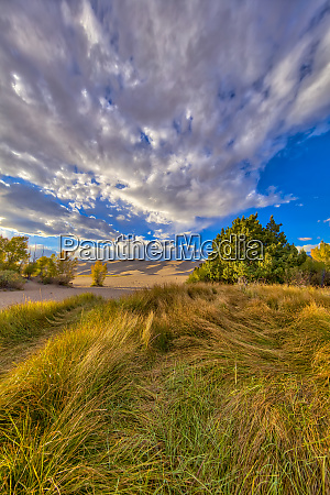 usa colorado great sand dunes national