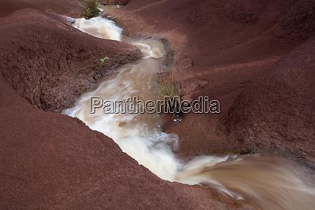 usa hawaii kauai flowing creek through