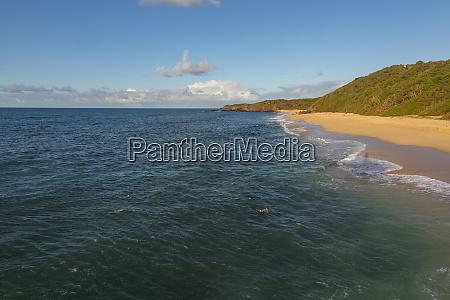 monk seal laau point molokai hawaii