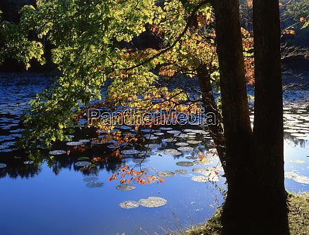 usa illinois lake murphysboro state park
